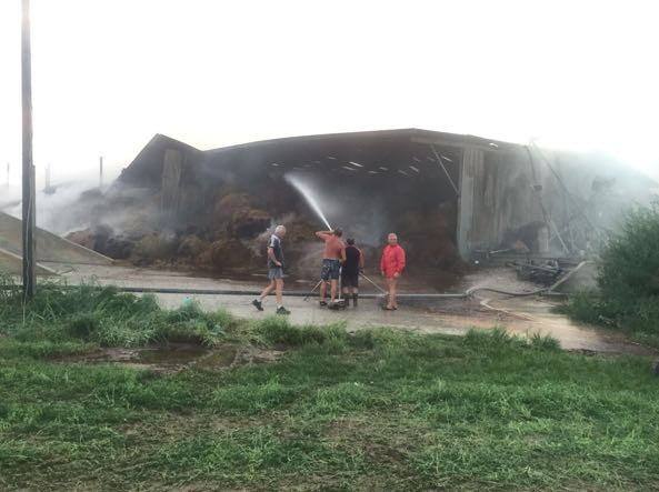 Incendio in una stalla a Lonato muoiono quaranta mucche
