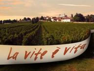 Un chilometro di tela tra le vigne: 30 artisti per la natura in autunno