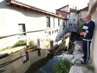 Allarme nutrie a San Bartolomeo «Abbiamo paura per le infezioni»