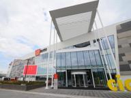 Il successo dei centri commerciali: lo shopping che piace