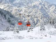 L'inverno in anticipo: la prima nevicata dell'anno sul Tonale