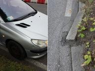Via Oberdan, marciapiede divelto dalle radici danneggia le auto di passaggio